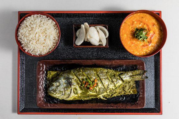 Fish Patrani2